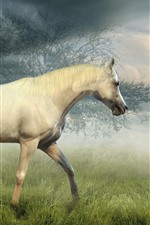 Preview iPhone wallpaper Horse walking in the grassland, trees, fog, clouds, morning