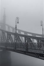 Preview iPhone wallpaper Iron bridge, fog, morning, black and white picture