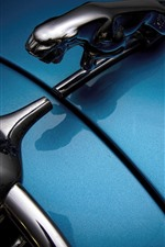 Preview iPhone wallpaper Jaguar car logo