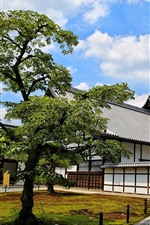 Preview iPhone wallpaper Japan, Kyoto, Nagoya, houses, trees