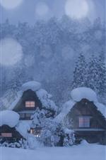 Japão, Shirakawa-go, aldeia, casas, árvores, neve grossa, inverno