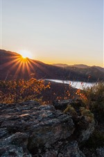 Preview iPhone wallpaper Lake, mountains, forest, trees, autumn, sun rays