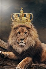 Preview iPhone wallpaper Lion, king, crown