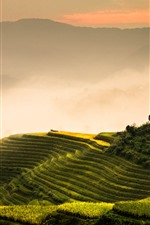 Preview iPhone wallpaper Longji rice terraces, morning, fog, mountains, Guilin, China