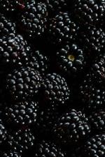 Muchas moras, bayas, frutas.