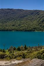 Preview iPhone wallpaper New Zealand, Wakatipu Lake, mountains, trees