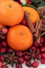 Naranjas, canela, bayas rojas
