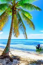 iPhone обои Пальмы, пляж, лодка, море, голубое небо, тропика, лето
