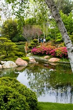 Preview iPhone wallpaper Park, trees, pond, stones, people