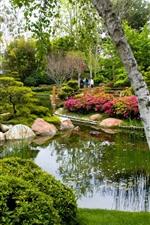 Park, trees, pond, stones, people