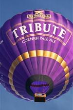 Preview iPhone wallpaper Purple hot air balloon