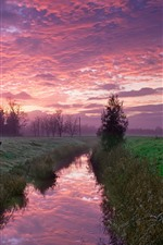 Preview iPhone wallpaper River, trees, grass, fields, clouds, countryside, morning