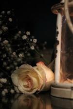 iPhone обои Роза и фонарь