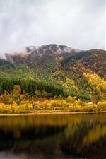 Scotland, Reino Unido, árvores, Rio, reflexão da água, outono