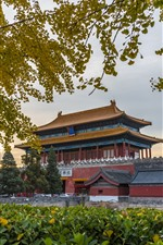 Shenwumen, Pekín, China, árboles, otoño