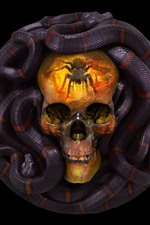 Preview iPhone wallpaper Skull, snake, horror