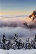 Eslovaquia, montaña, árboles, nubes, nieve, invierno