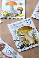 Algunos sellos, setas, flores.