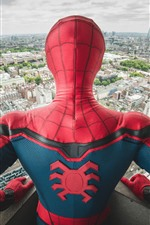 Preview iPhone wallpaper Spider-man, back view, city