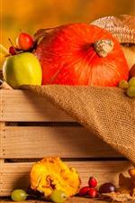 Preview iPhone wallpaper Still life, pumpkin, grapes, pears, box