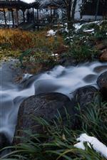 Piedras, arroyo, plantas, nieve, invierno, parque, Hangzhou, China