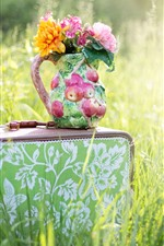 Preview iPhone wallpaper Suitcase, flowers, vase, grass