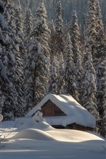 Preview iPhone wallpaper Thick snow, house, trees, winter, forest