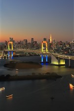 Tokyo, Japan, Rainbow Bridge, city night, river, boats, lights