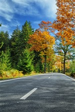 Trees, road, autumn, clouds