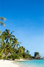 Preview iPhone wallpaper Tropical nature scenery, beach, sea, palm trees, huts, resort, blue sky