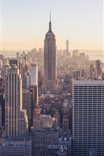 Estados Unidos, Nueva York, edificio Empire State, rascacielos, ciudad, niebla, mañana