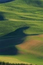 Preview iPhone wallpaper USA, Palouse, beautiful wheat fields, green, hills