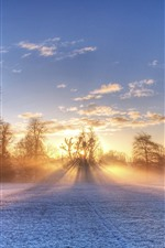 Preview iPhone wallpaper Winter, football ground, snow, trees, sun rays, morning