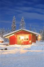 Invierno, nieve, casas, arboles, luces.