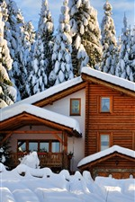Wood house, trees, thick snow, winter