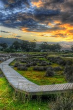 Preview iPhone wallpaper Wooden bridge, coast, river, trees, grass, clouds, dusk