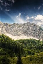 Austria, mountains, trees, hut