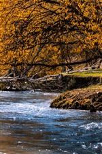 iPhone壁紙のプレビュー 秋、小川、水、木、黄色の葉