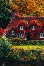 Autumn, red leaves covered the house, bridge, trees