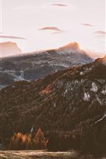 Autumn, trees, mountains, fog, sunrise, morning