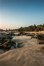 Bali, beach, palm trees, sands, tropical