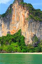 Preview iPhone wallpaper Beach, sea, mountain, bushes