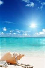 Praia, concha do mar, jóias, mar, sol, azul