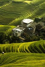 Preview iPhone wallpaper Beautiful Longji rice terraces, village, Guilin, China
