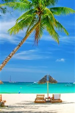 Preview iPhone wallpaper Beautiful beach, palm trees, sea, chairs, tropical