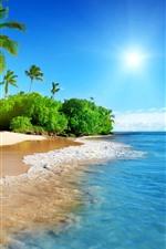 Bela praia, palmeiras, mar, sol, paisagens tropicais
