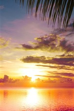 Preview iPhone wallpaper Beautiful sunset, sea, water, clouds, beach, palm tree foliage