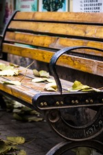 Preview iPhone wallpaper Bench, leaves