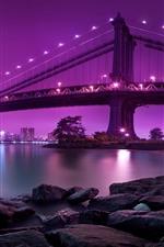 Bridge, lighting, river, rocks, city, pink background