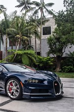 Bugatti blue supercar, palm trees